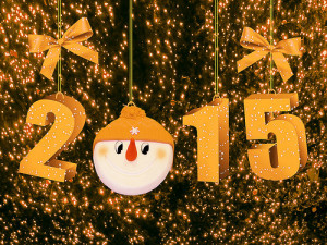 2015 number in winter theme